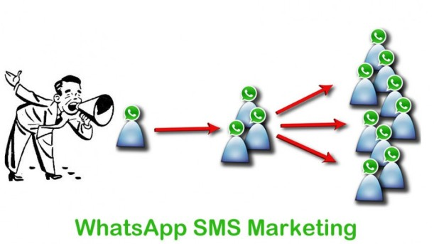 Whatsapp Messaging Services